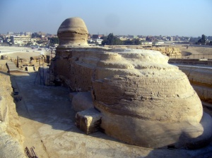 The back of the sphinx.  Notice how close the pyramid complex is to the city of Giza